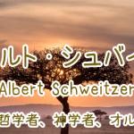 アルベルト・シュバイツァーの名言